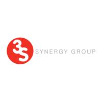 3S Synergy Group Virtual CFO